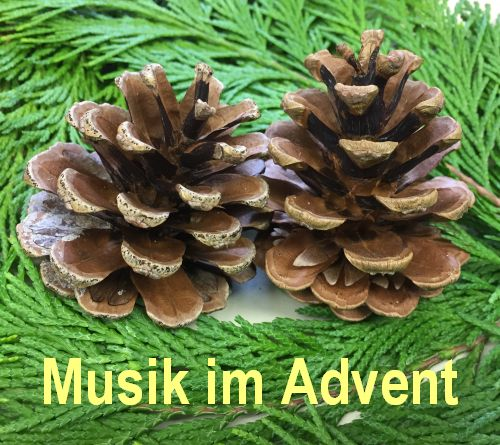 Advent-Singen in Grundschule
